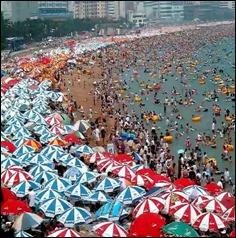 umbrellasatthebeachchina