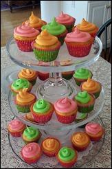 Cupcakes102_0824