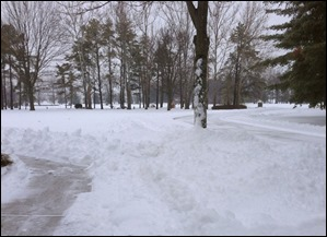 snowyicyday140205s