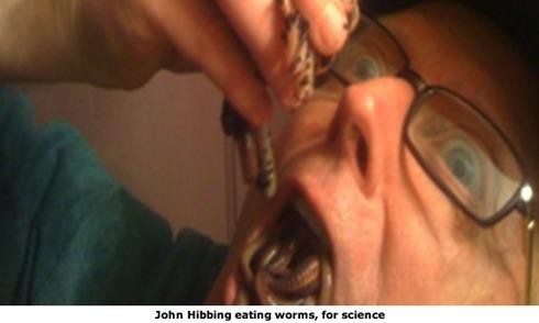 hibbing_eating_worms