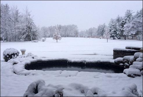 winterhasarrived141117