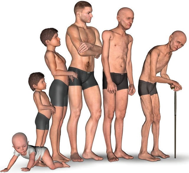 Sarcopenia and working to maintain your muscles as you age