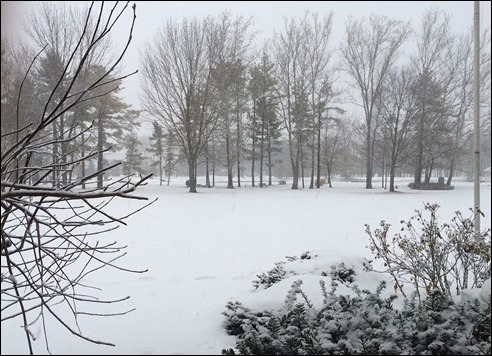 snowscene150303