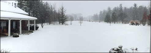 SnowingWheresPool150222