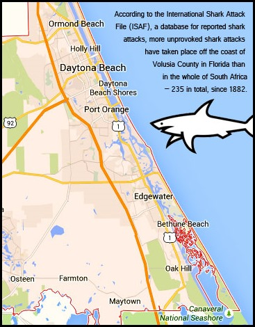 Which Beach Will You Swim At Volusia County Florida Posted By Richc On September   Volusiacounty Fl_sharks Volusia County Florida