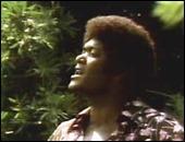 DobieGray1973