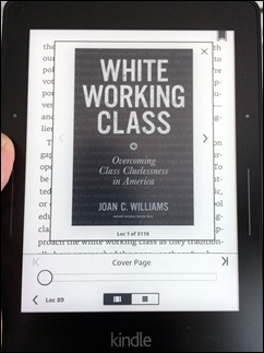 WhiteWorkingClass_JoanCWilliams170516