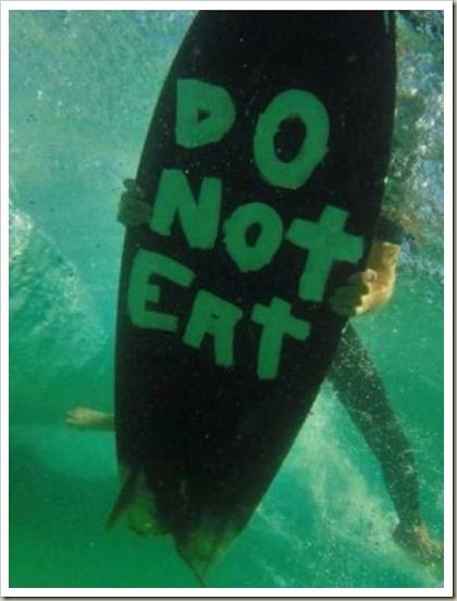 SurferGirlDoNotEat