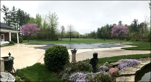 GoodFriday_Backyard_pano190419