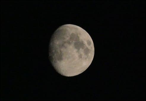 Moon190613_1030144