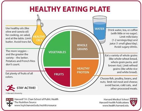 HealthyEatingChart_Harvard