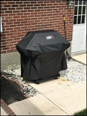 NewWeberGrillCovered200617