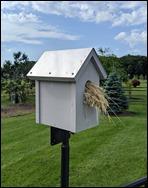 OostraBluebirdHouse210612