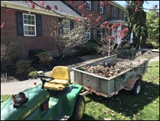 CleaningFrontBeds210327