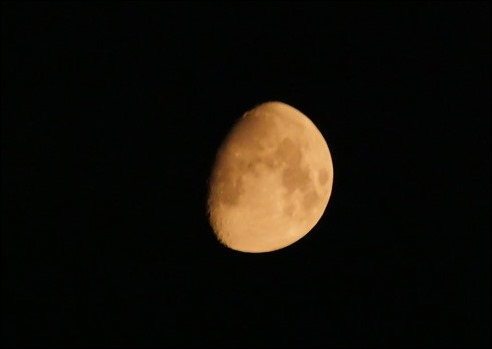 Moon210719
